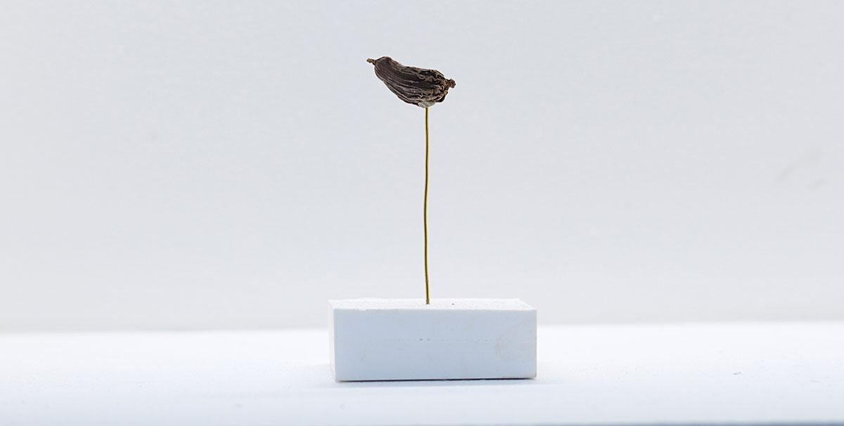 artifact-martyr-museum